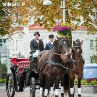 Zirgu sēta Klajumi - kāzu karietes īre un viesu izklaides