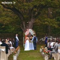 Laulību ceremonija zem simt gadu senā ozola
