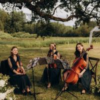 Skaistākie skaņdarbi ietērpti stīgu instrumentu skaņās | Trio filum